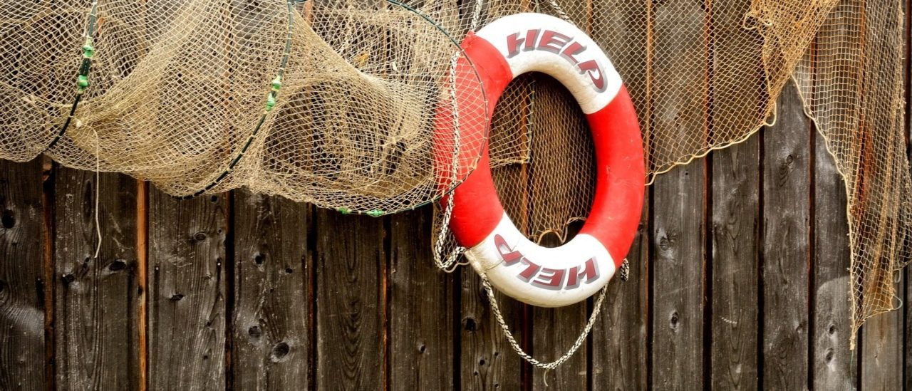 Life buoy and fishing net