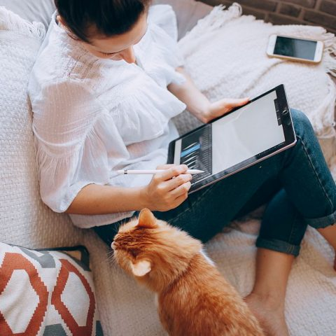Work from home - woman working on laptop with cat